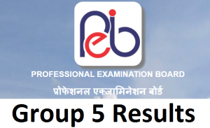 MPPEB Group 5 Post Result 2021